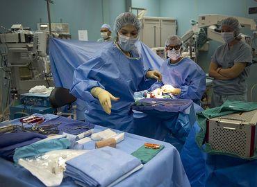 La liposuccion : déroulement, avantages et suites opératoires
